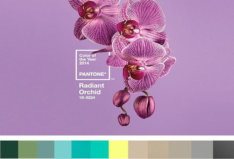 Tendances Pantone Radiant Orchid