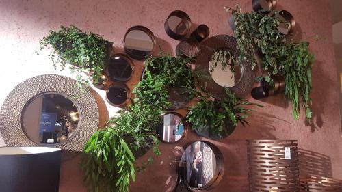 composition-miroirs-vegetal